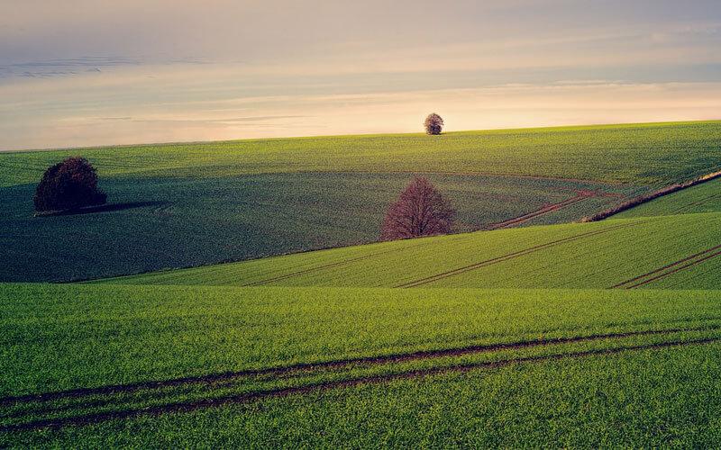 土地貸款有哪些選擇?